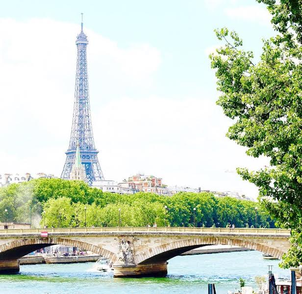 gorgeous eiffel tower in france