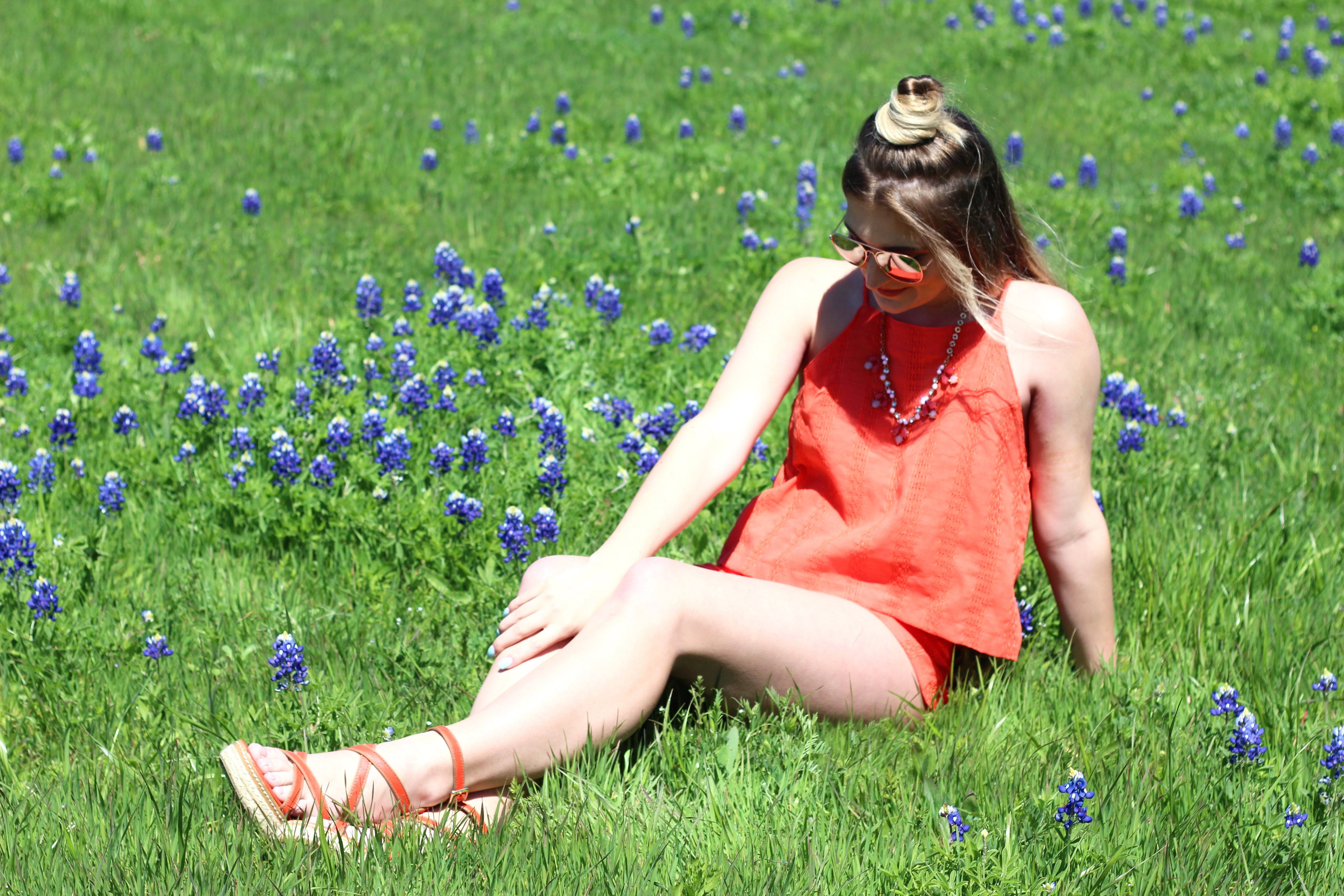 blue bonnets in texas