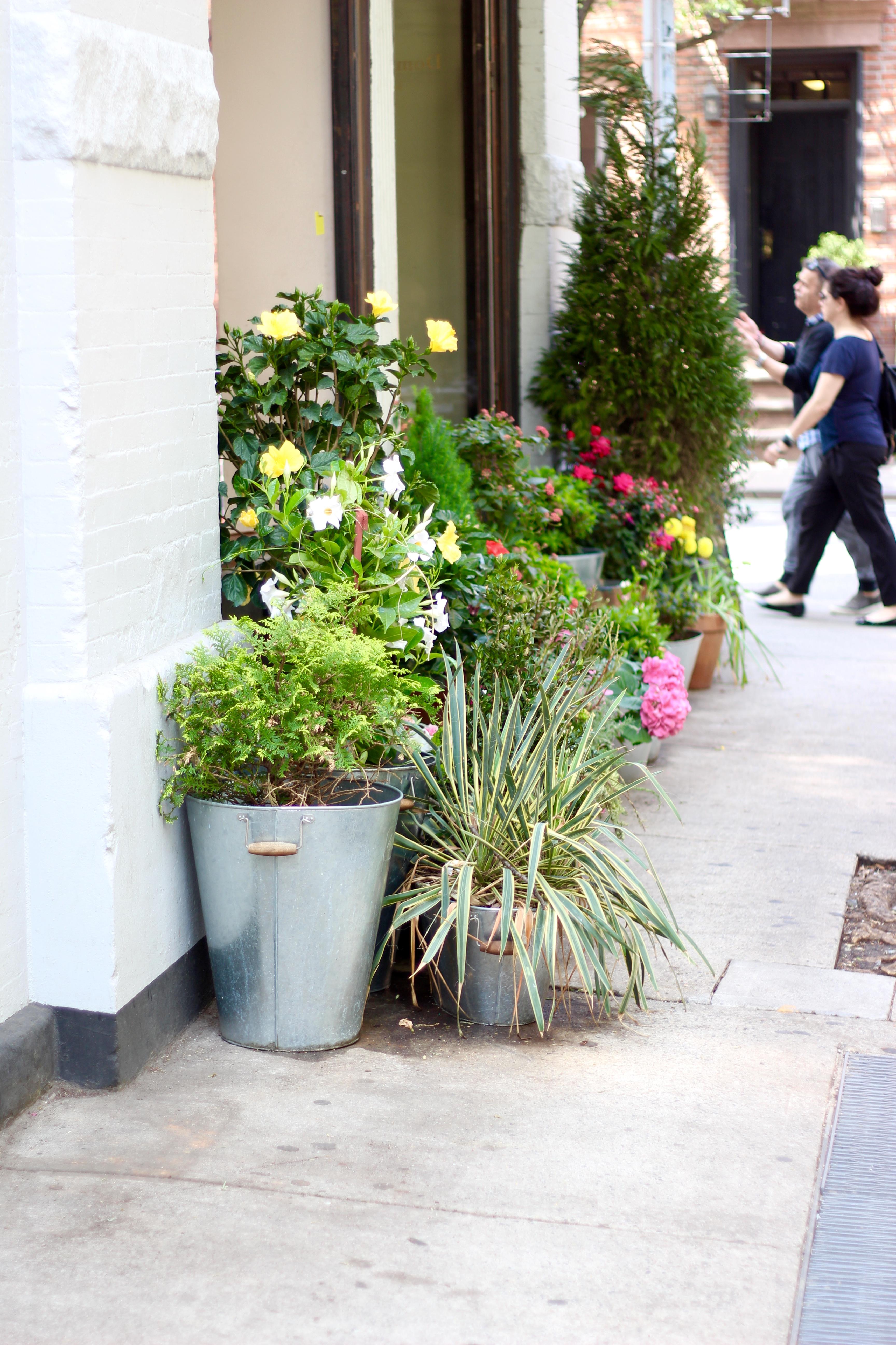 new york city flowers in soho | Audrey Madison Stowe Blog