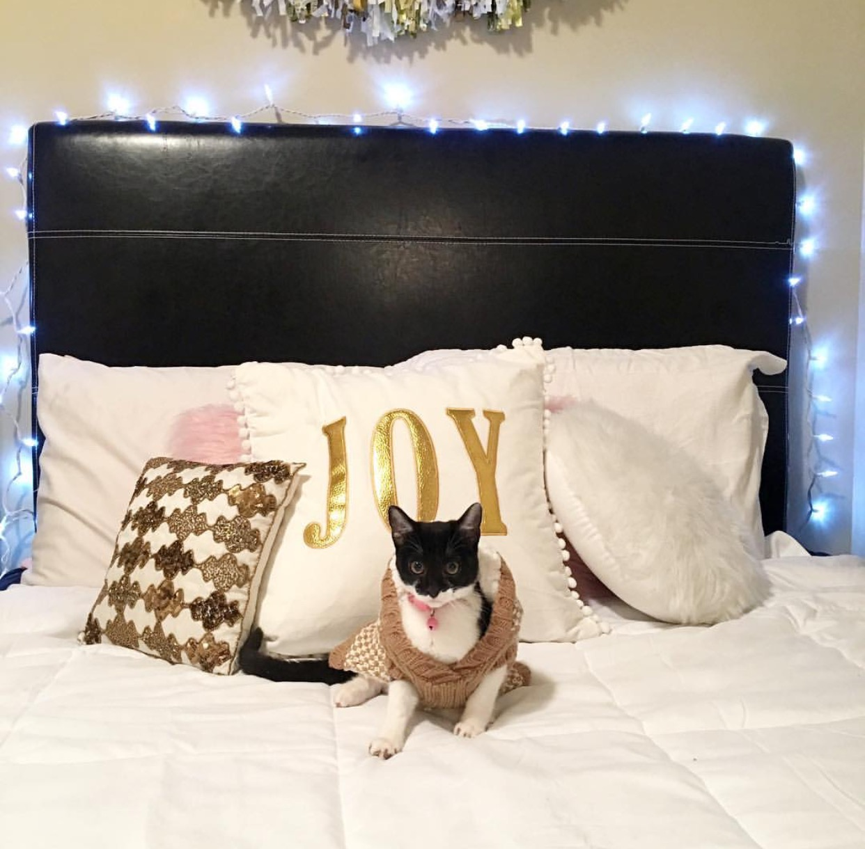 winter bedroom | AMS Blog