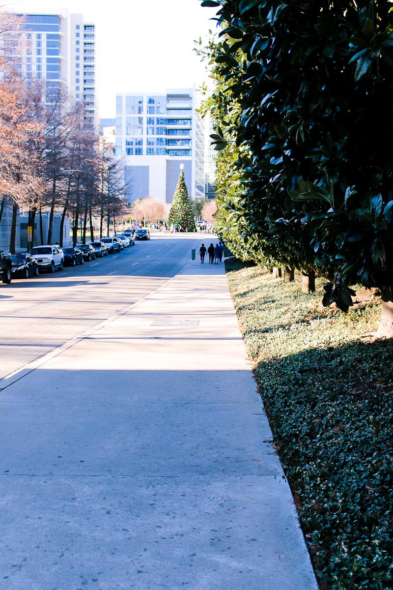 Winter Break in Dallas | AMS Blog