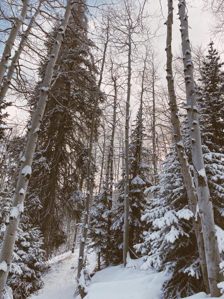 Winter Trip to Park City, Utah | audrey madison stowe
